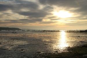 Poole Harbour WEB